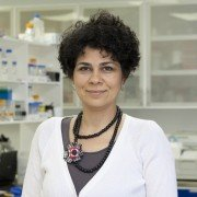 Dra. Patricia Llanes Fernández